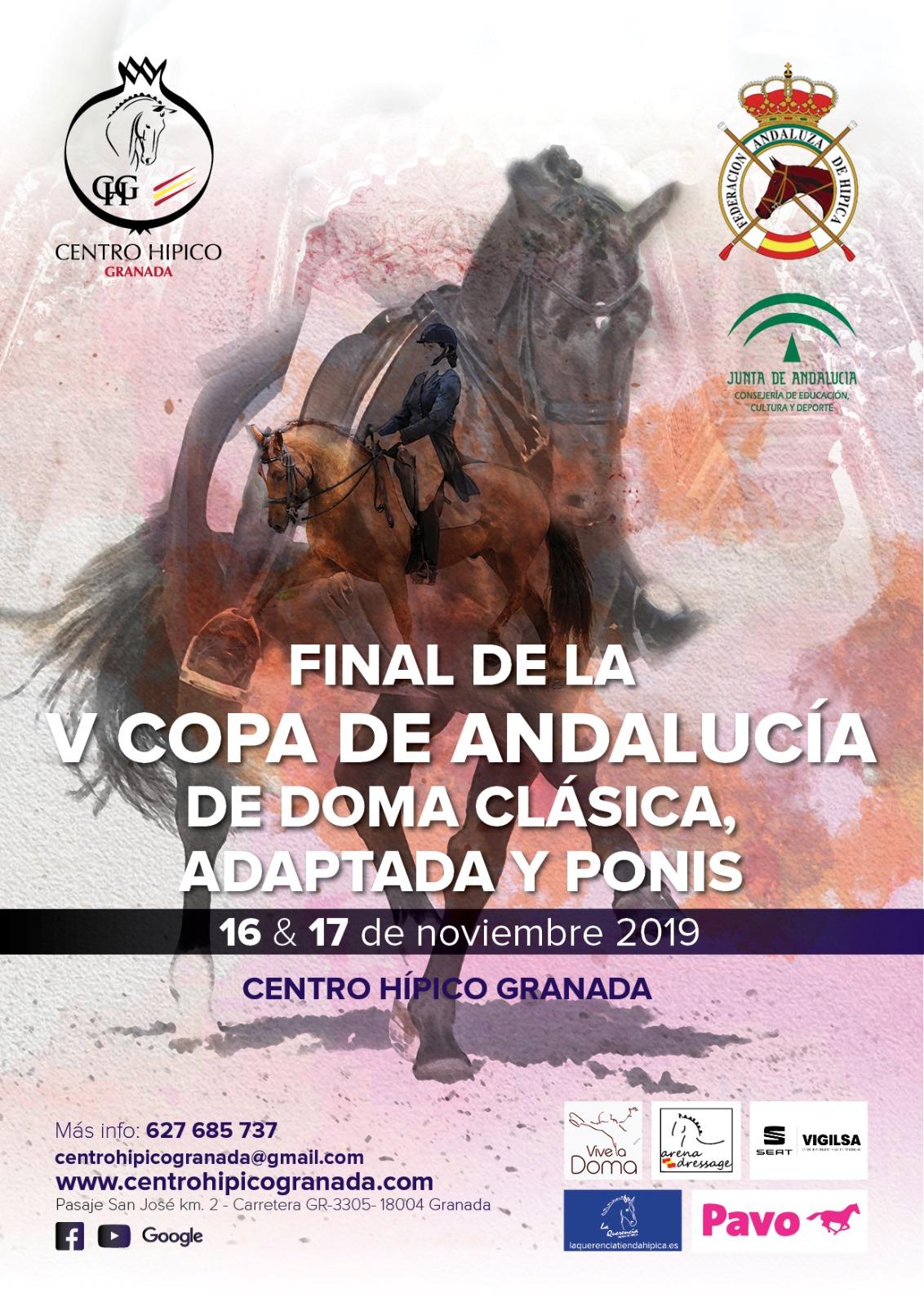Final V Copa Andalucía Doma Clásica, Adaptada y Ponis 2019